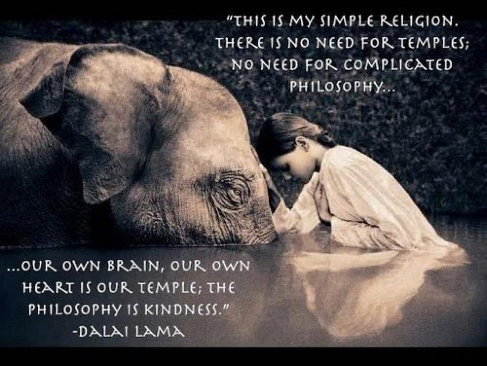 Dalai Lama Qoute